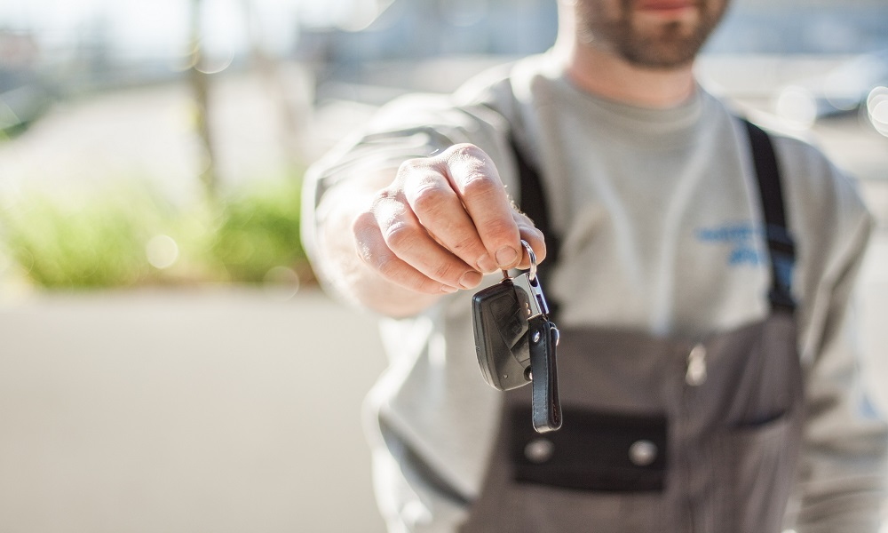 What are the advantages and disadvantages of renting a car?