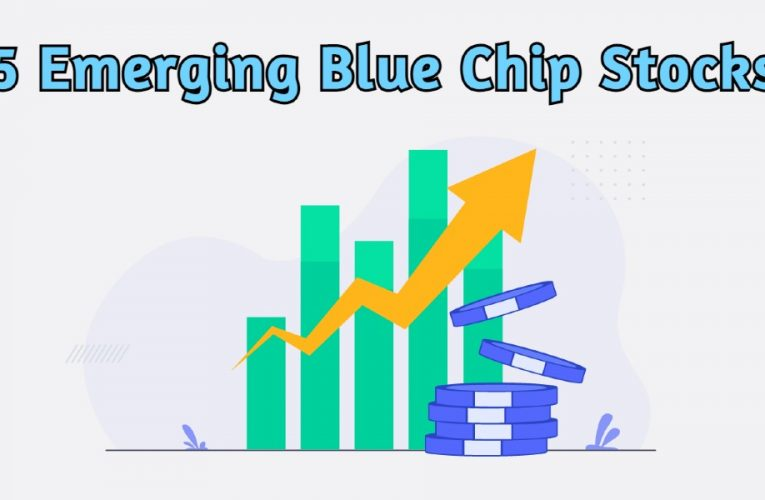 Watch Out for These 5 Emerging Blue Chip Stocks in India