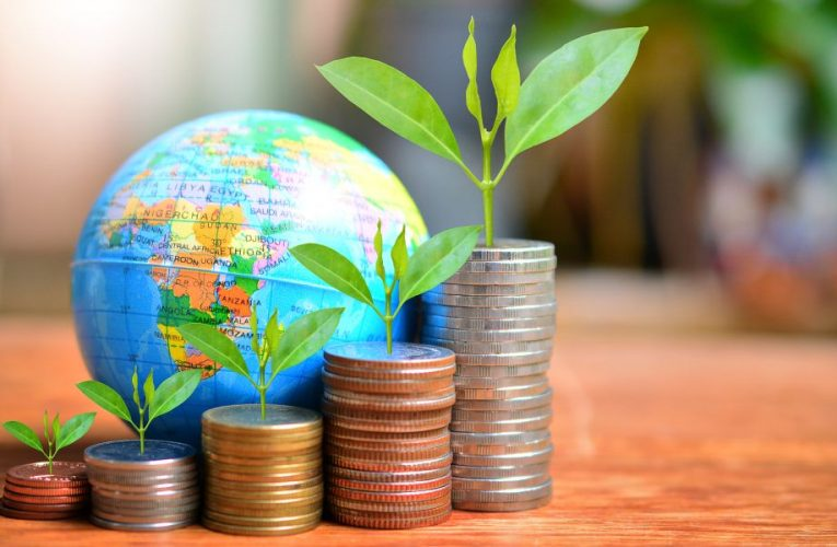4 International Mutual Funds Delivering High Returns
